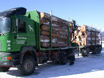 Holztransport © LFD